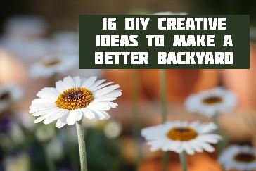 ideas-better-backyard-title-page