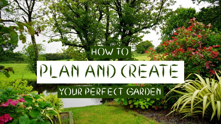 how to plan and create your perfect garden